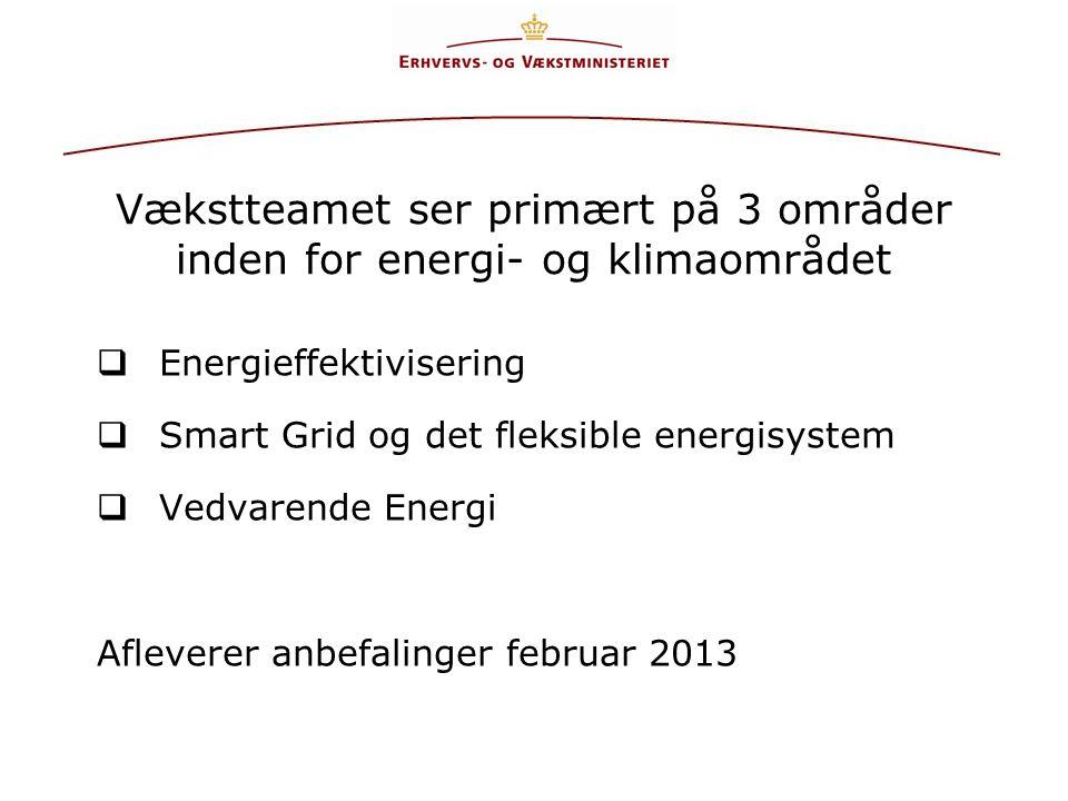 Vækstteamet ser primært på 3 områder inden for energi- og klimaområdet