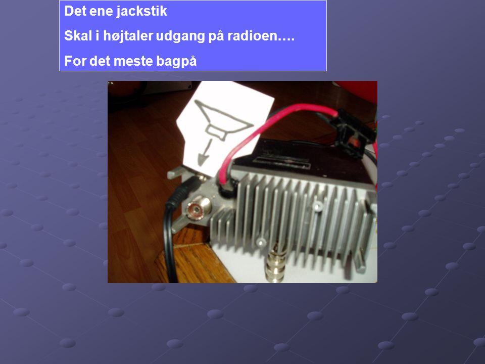 Det ene jackstik Skal i højtaler udgang på radioen…. For det meste bagpå