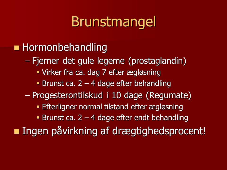 Brunstmangel Hormonbehandling Ingen påvirkning af drægtighedsprocent!