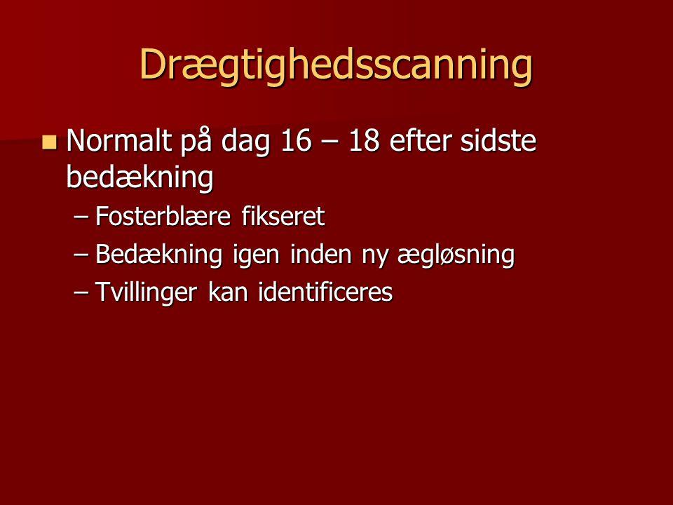 Drægtighedsscanning Normalt på dag 16 – 18 efter sidste bedækning