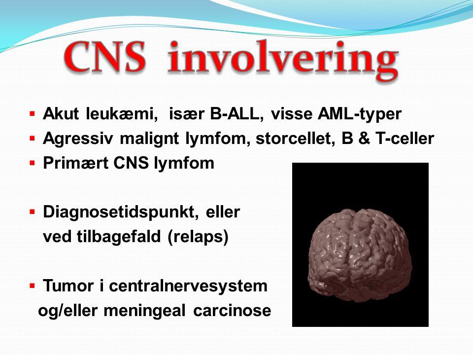 CNS involvering Akut leukæmi, især B-ALL, visse AML-typer