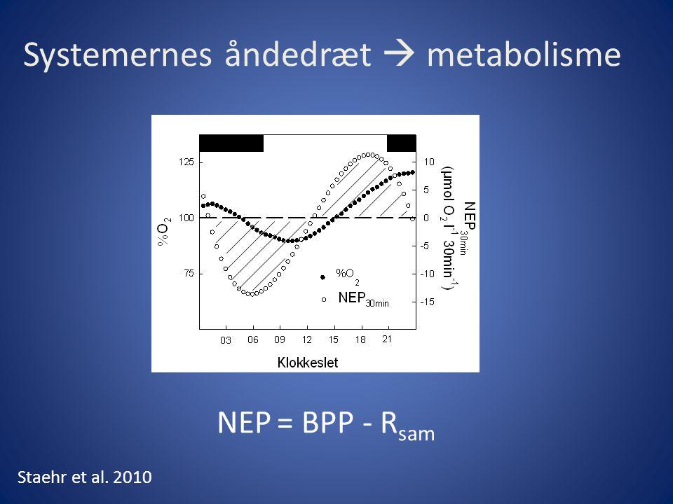 Systemernes åndedræt  metabolisme