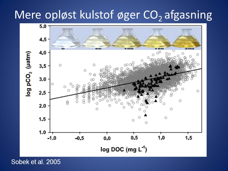 Mere opløst kulstof øger CO2 afgasning
