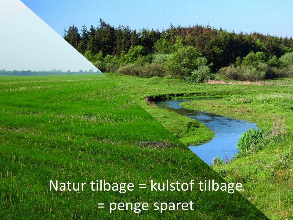 Natur tilbage = kulstof tilbage = penge sparet
