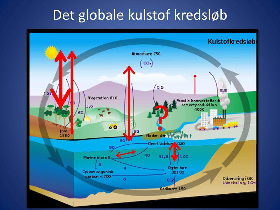 download handbook of radioactive contamination and decontamination