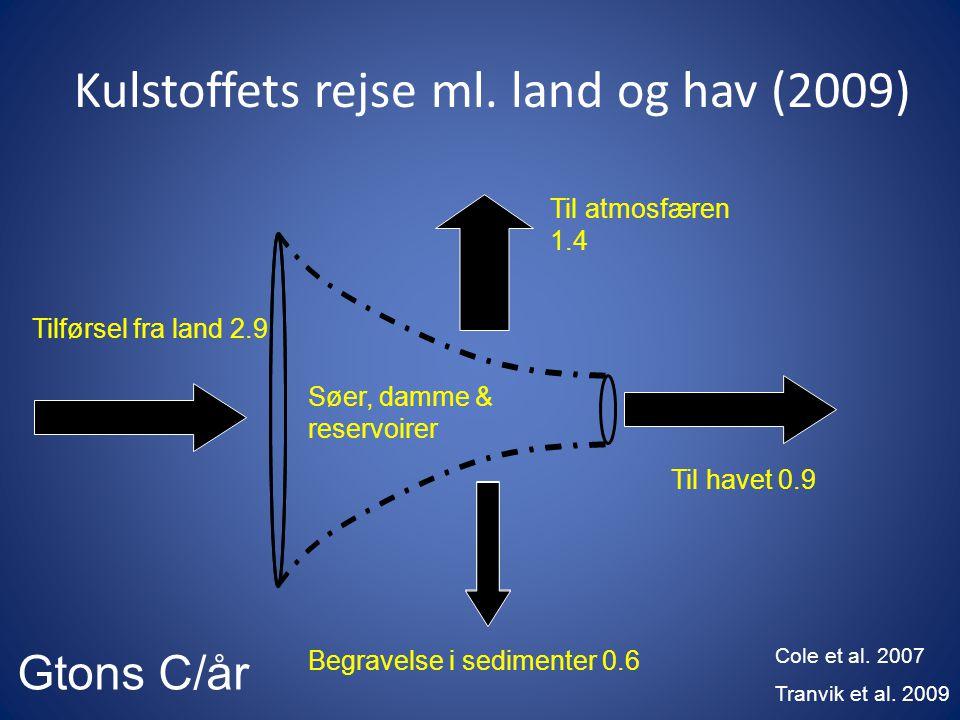 Kulstoffets rejse ml. land og hav (2009)