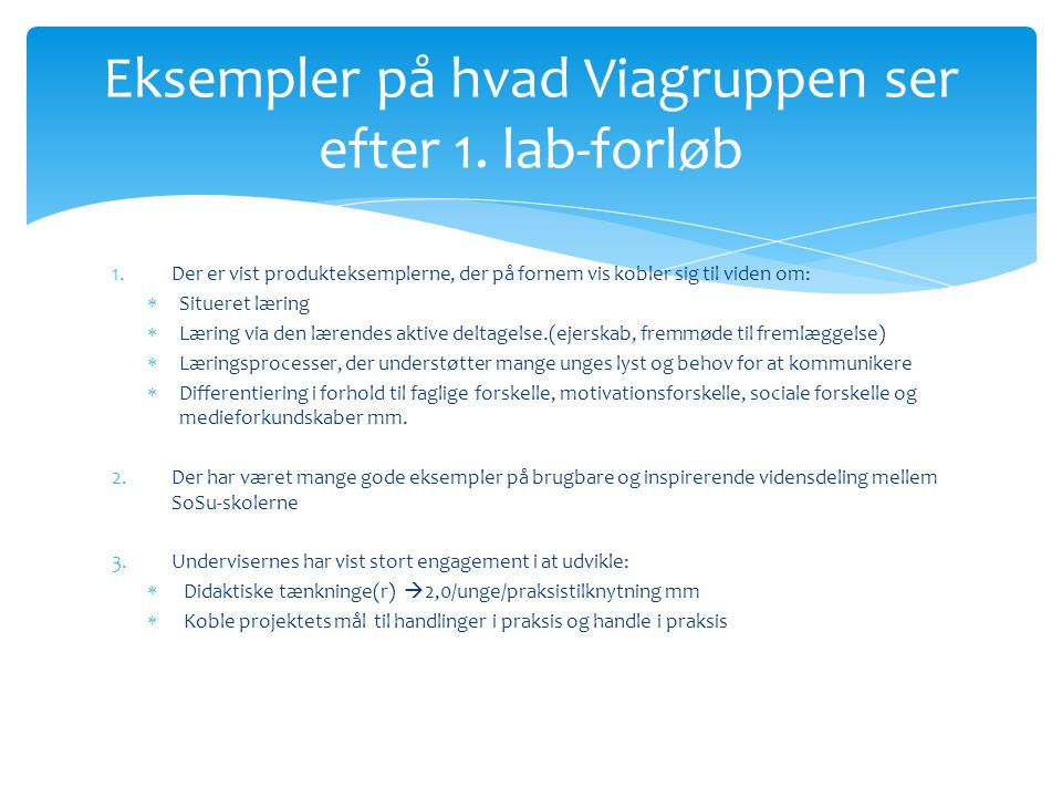 Eksempler på hvad Viagruppen ser efter 1. lab-forløb
