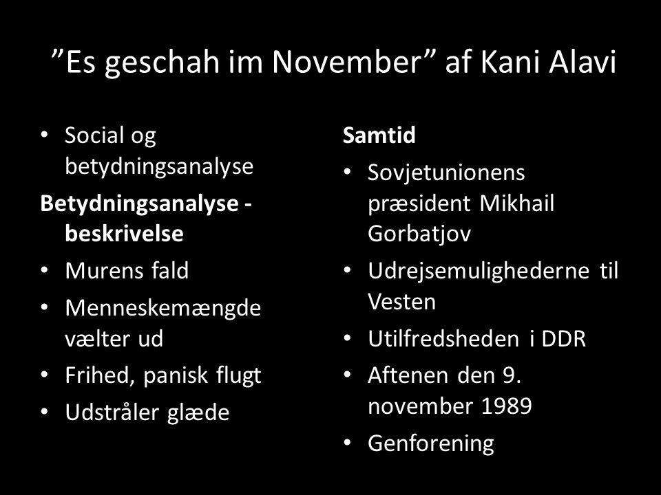 Es geschah im November af Kani Alavi