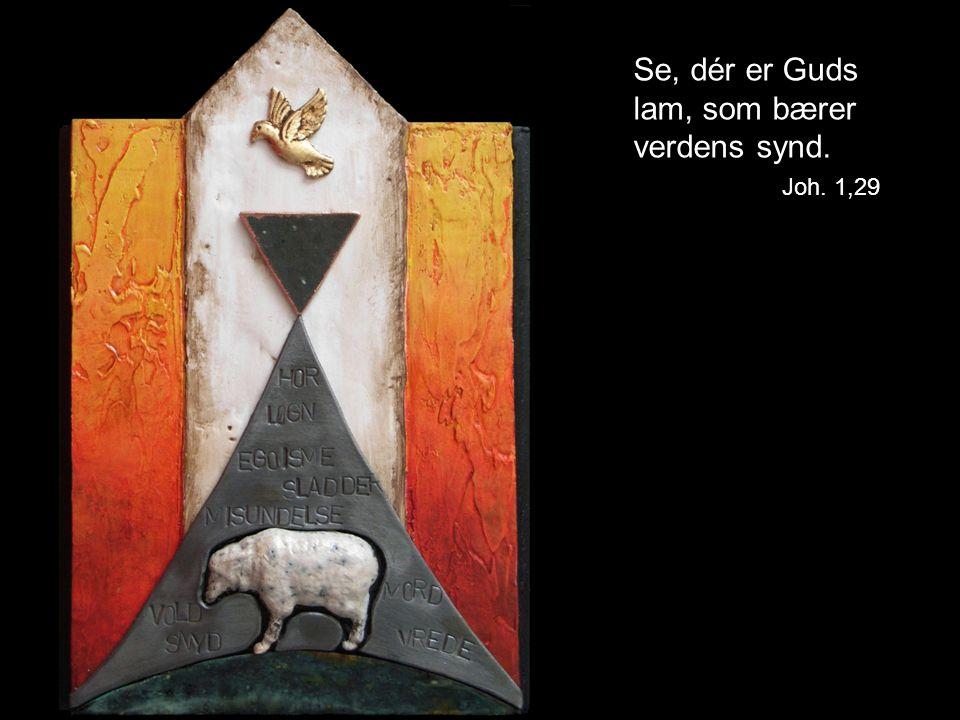 Se, dér er Guds lam, som bærer verdens synd. Joh. 1,29