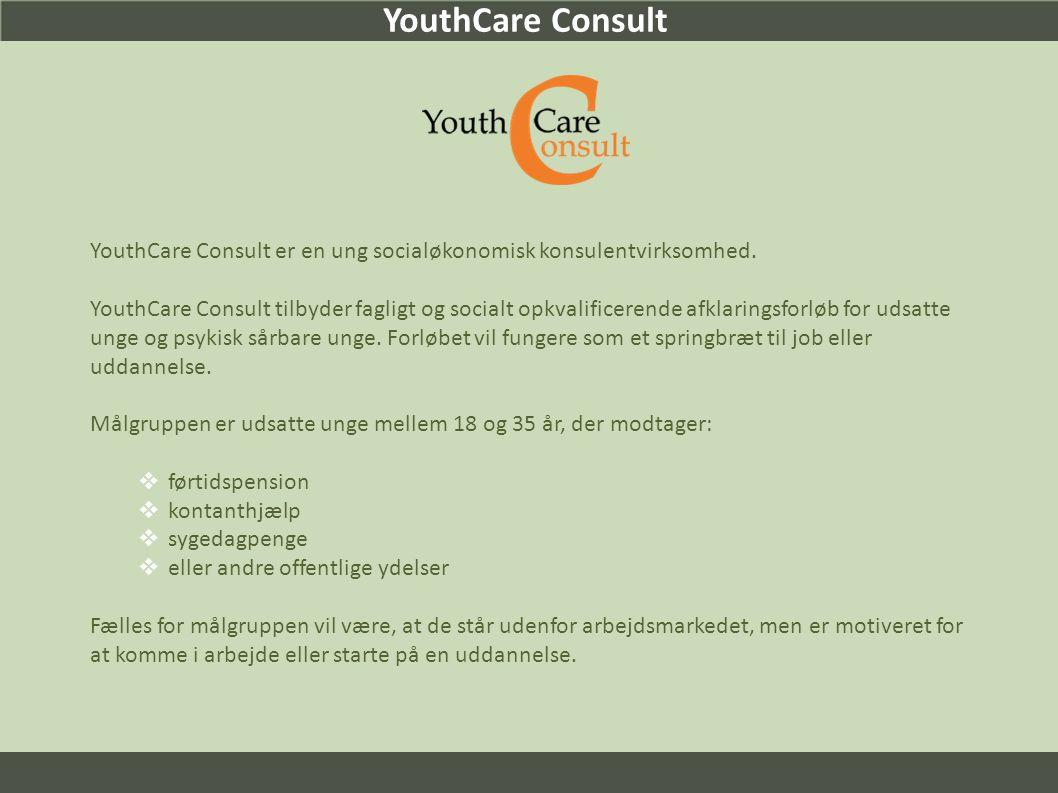 YouthCare Consult YouthCare Consult er en ung socialøkonomisk konsulentvirksomhed.