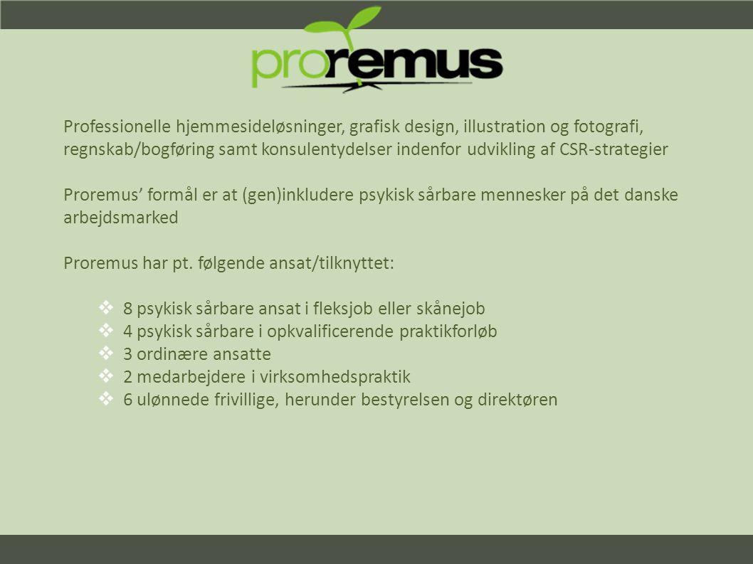 Professionelle hjemmesideløsninger, grafisk design, illustration og fotografi, regnskab/bogføring samt konsulentydelser indenfor udvikling af CSR-strategier