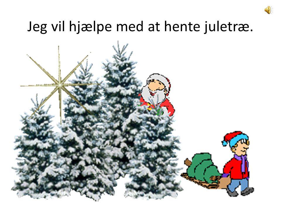 Jeg vil hjælpe med at hente juletræ.