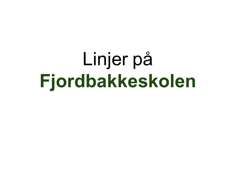 Linjer på Fjordbakkeskolen