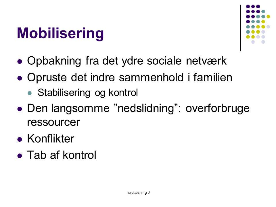 Mobilisering Opbakning fra det ydre sociale netværk