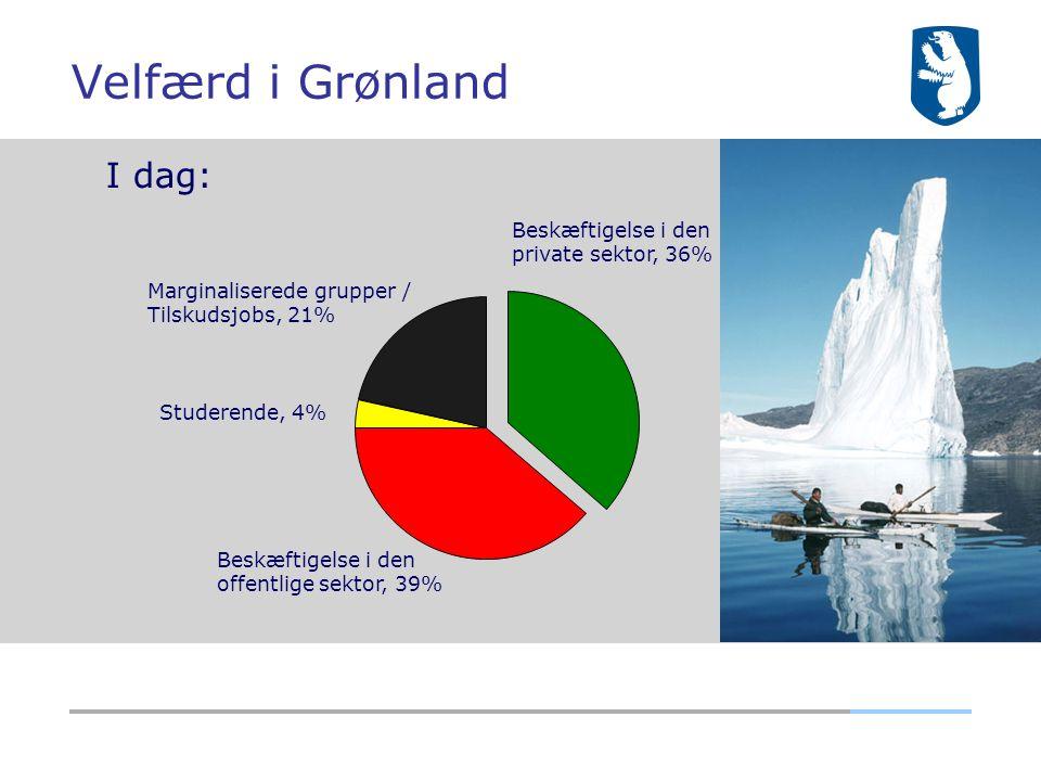 Velfærd i Grønland I dag: Beskæftigelse i den private sektor, 36%