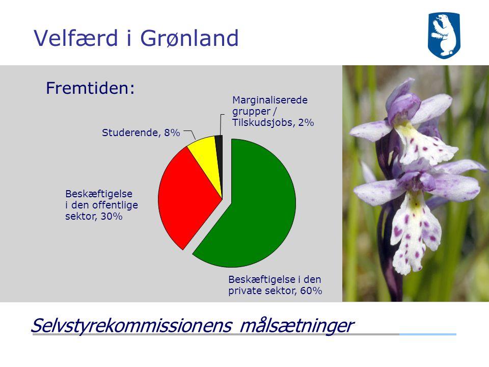 Velfærd i Grønland Selvstyrekommissionens målsætninger Fremtiden: