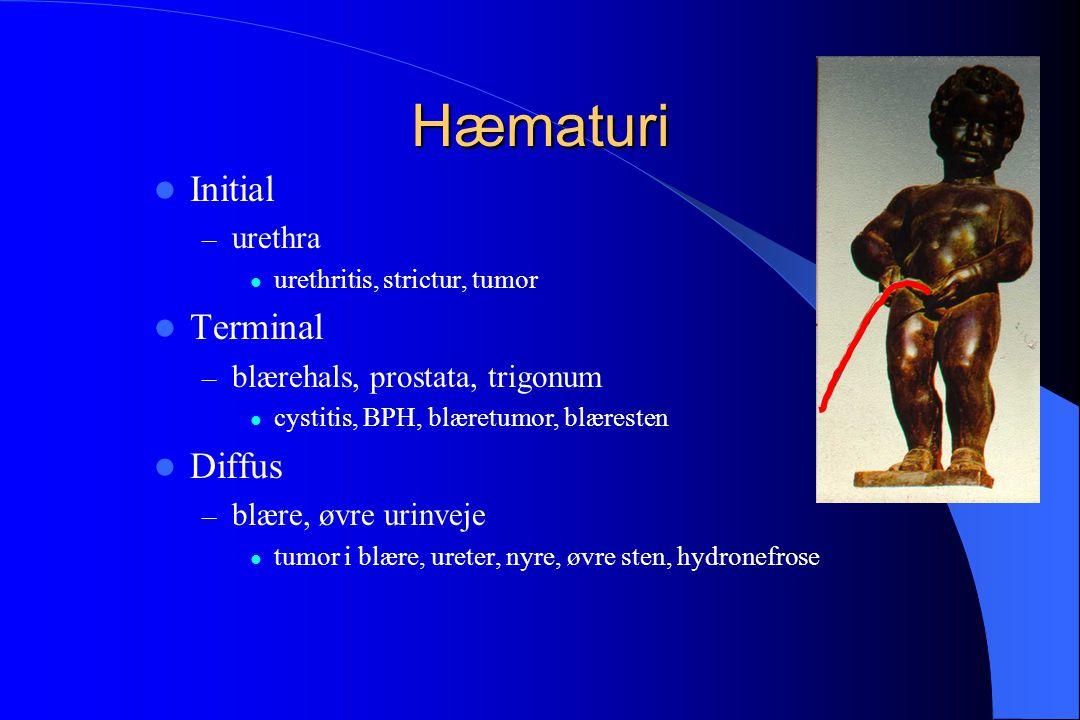 Hæmaturi Initial Terminal Diffus urethra blærehals, prostata, trigonum