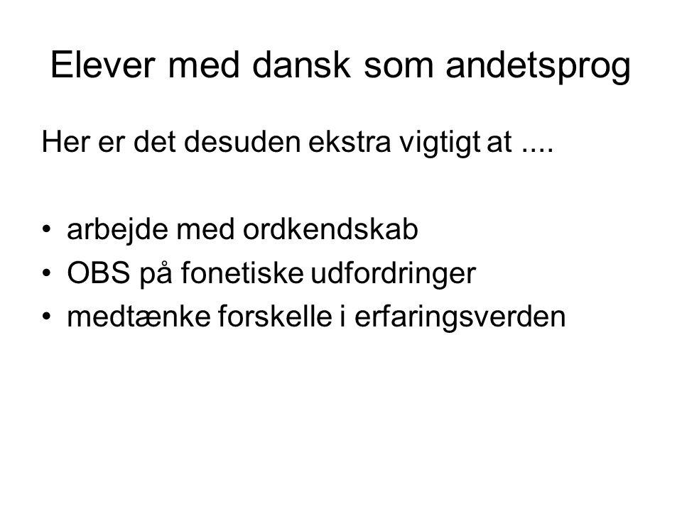 Elever med dansk som andetsprog