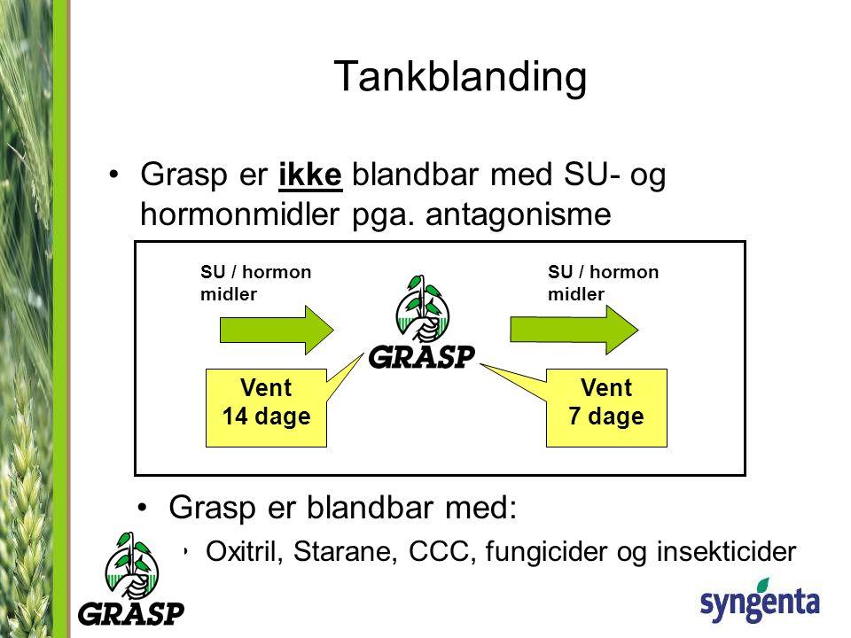 Tankblanding Grasp er ikke blandbar med SU- og hormonmidler pga. antagonisme. SU / hormon midler. SU / hormon midler.