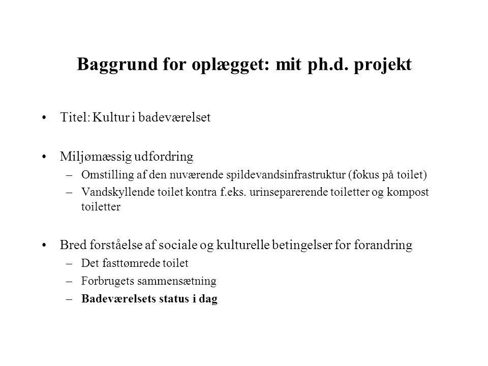 Baggrund for oplægget: mit ph.d. projekt