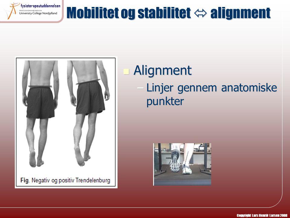 Mobilitet og stabilitet  alignment