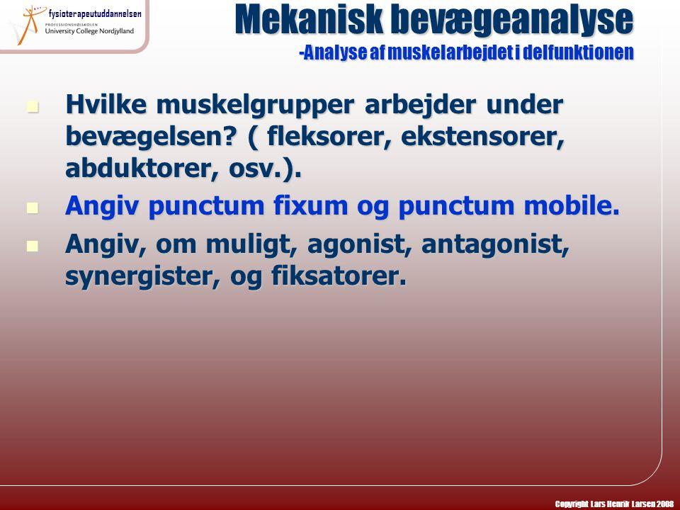 Mekanisk bevægeanalyse -Analyse af muskelarbejdet i delfunktionen