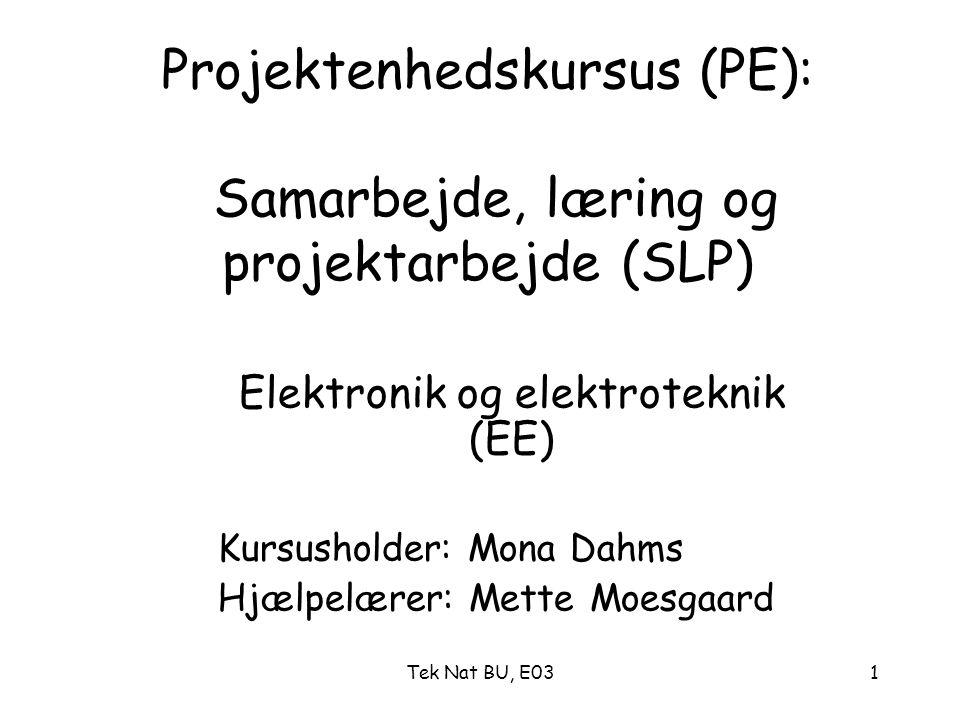 Projektenhedskursus (PE): Samarbejde, læring og projektarbejde (SLP)