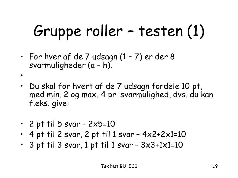 Gruppe roller – testen (1)