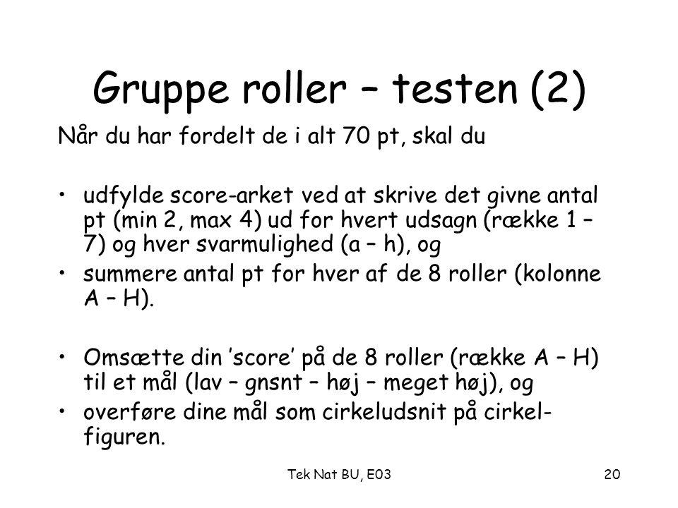 Gruppe roller – testen (2)