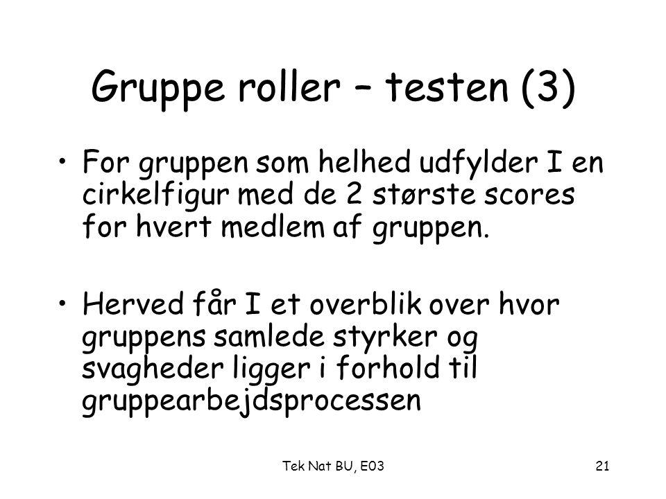 Gruppe roller – testen (3)