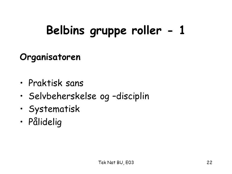 Belbins gruppe roller - 1