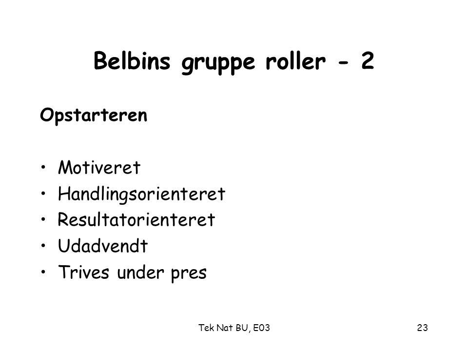 Belbins gruppe roller - 2