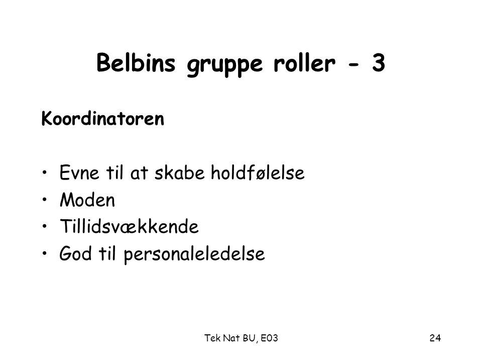 Belbins gruppe roller - 3