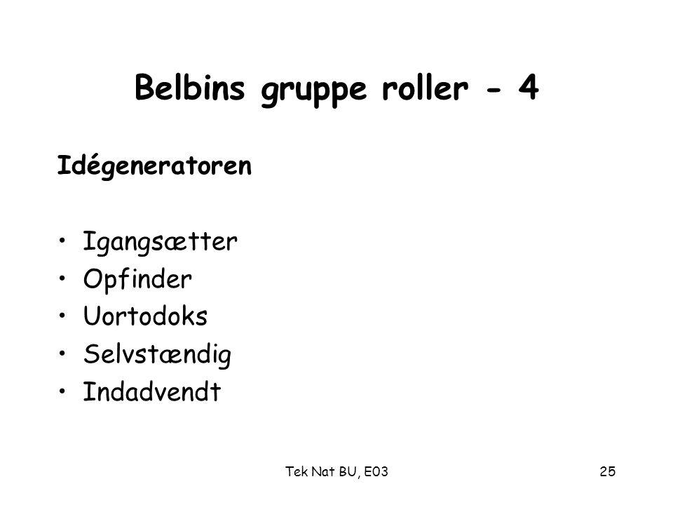 Belbins gruppe roller - 4