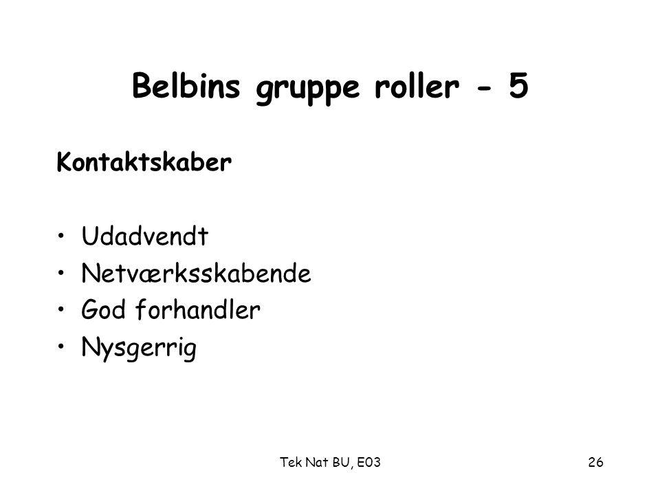 Belbins gruppe roller - 5