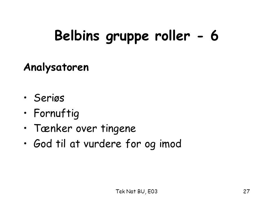 Belbins gruppe roller - 6