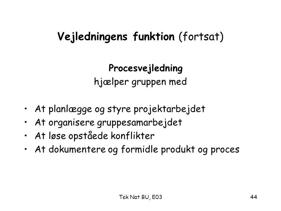 Vejledningens funktion (fortsat)