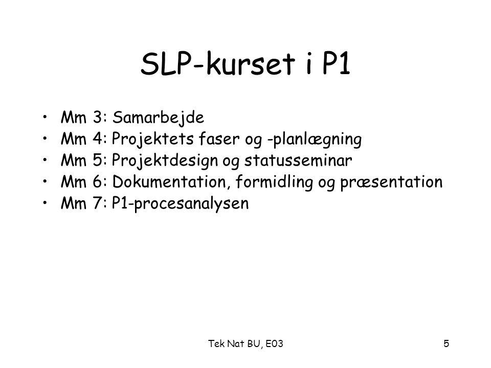 SLP-kurset i P1 Mm 3: Samarbejde