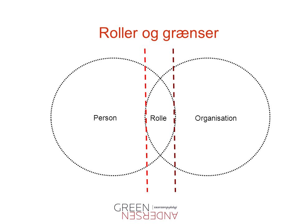 Roller og grænser Person Rolle Organisation