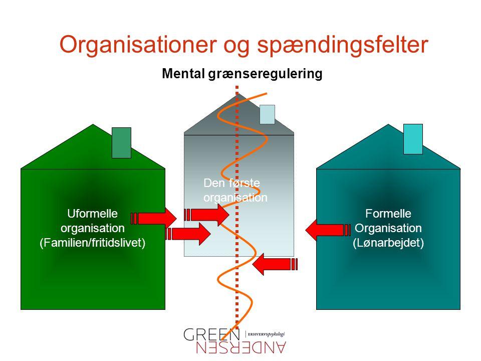 Organisationer og spændingsfelter