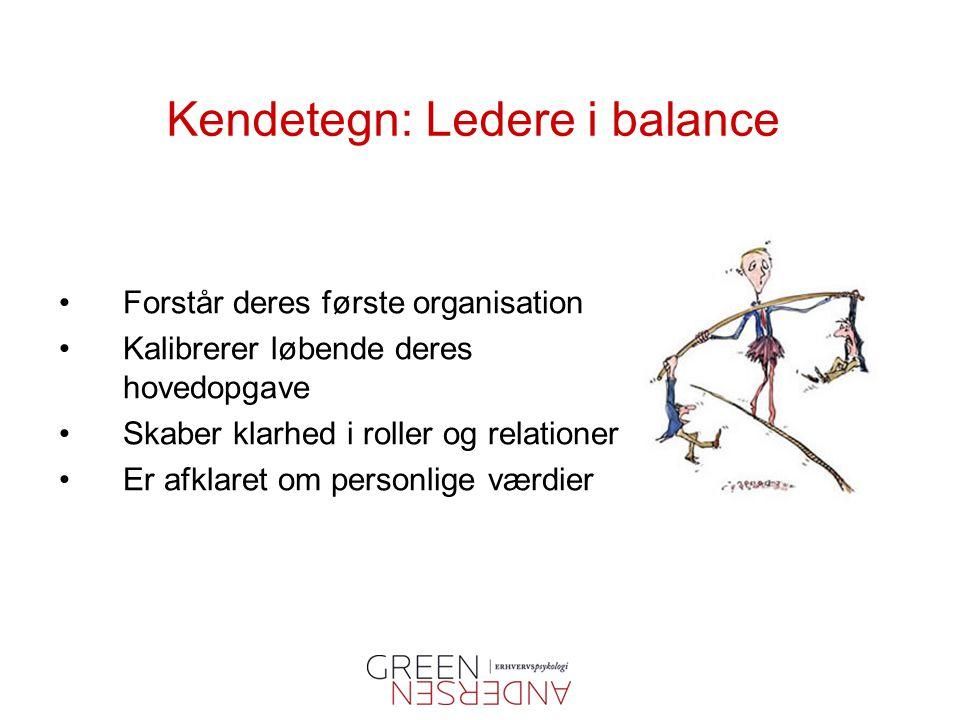 Kendetegn: Ledere i balance