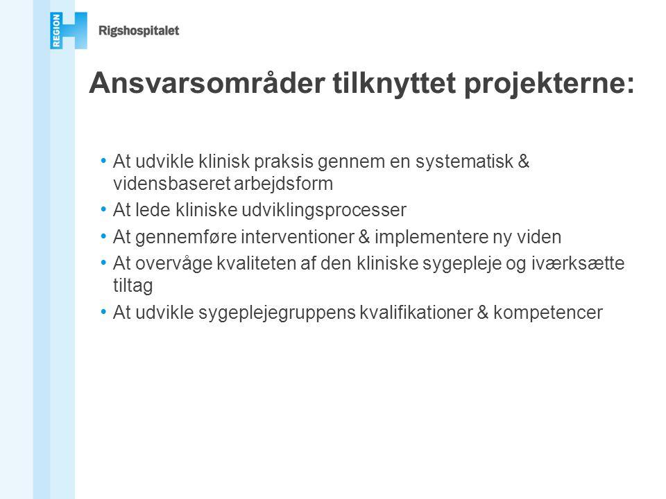 Ansvarsområder tilknyttet projekterne: