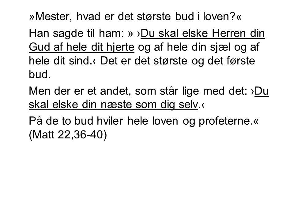 »Mester, hvad er det største bud i loven «