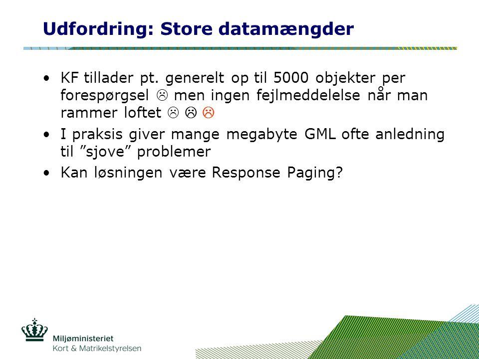 Udfordring: Store datamængder