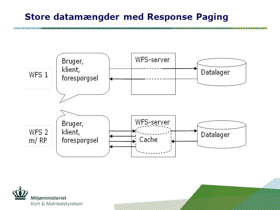 Store datamængder med Response Paging