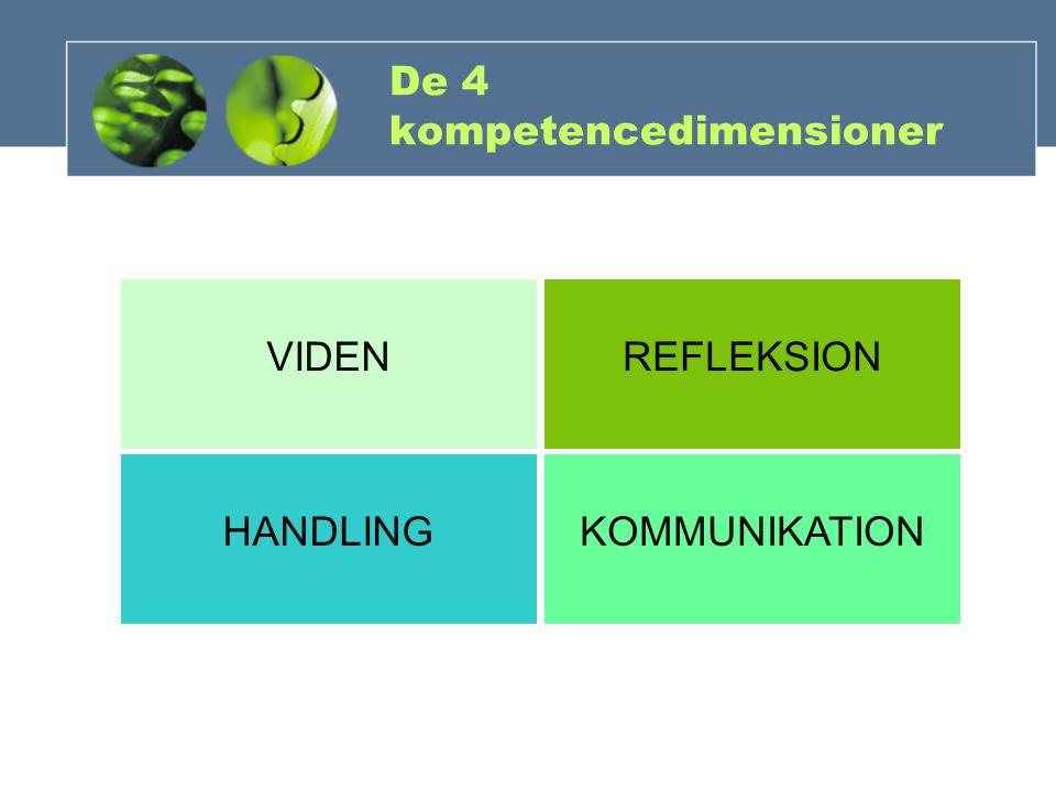 De 4 kompetencedimensioner