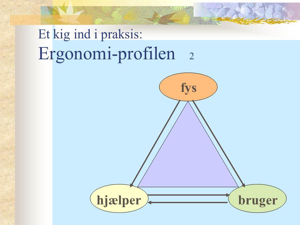 Et kig ind i praksis: Ergonomi-profilen 2