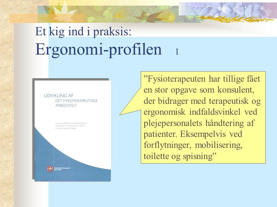 Et kig ind i praksis: Ergonomi-profilen 1