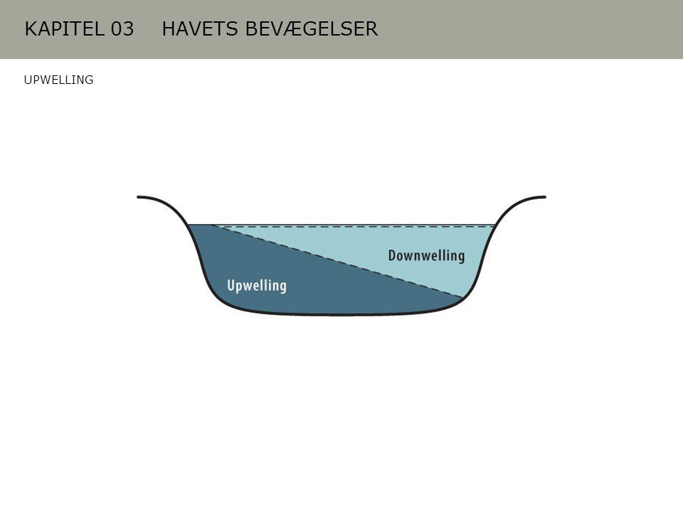 KAPITEL 03 HAVETS BEVÆGELSER