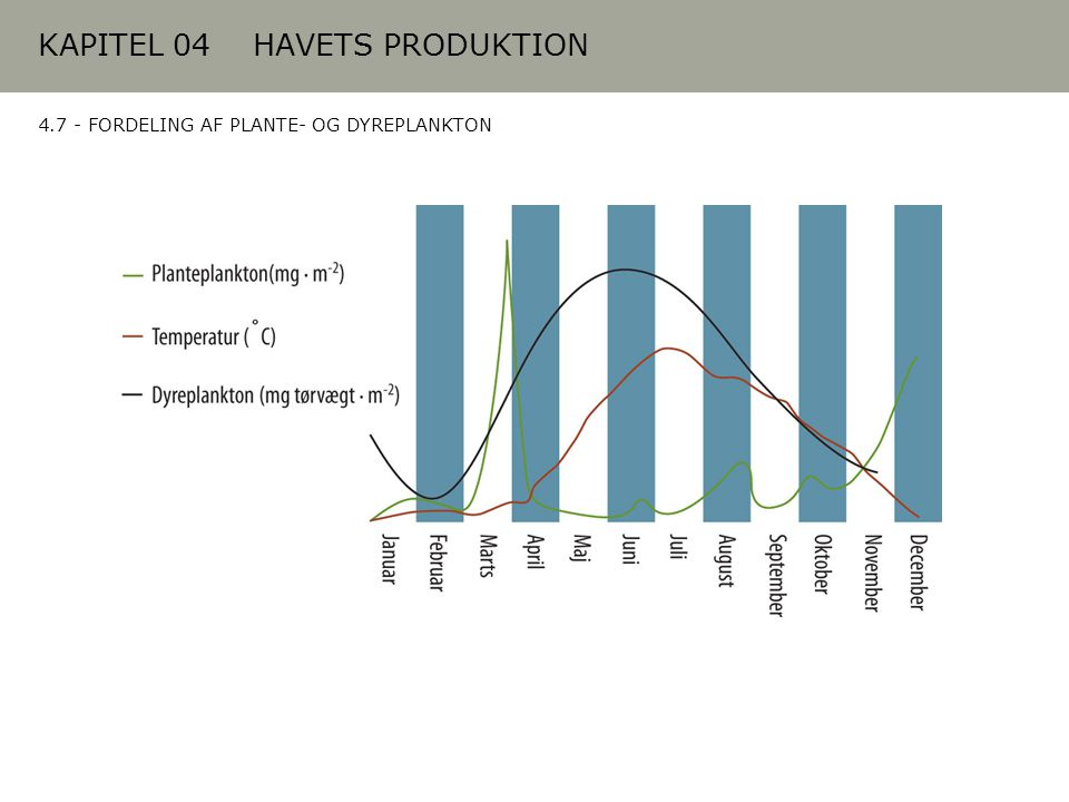 KAPITEL 04 HAVETS PRODUKTION